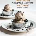"NadaMoo Copycat ""Java Crunch"" Ice Cream"