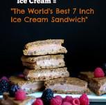 The 7 Inch Pumpkin Pie Chocolate Chip Ice Cream Sandwich