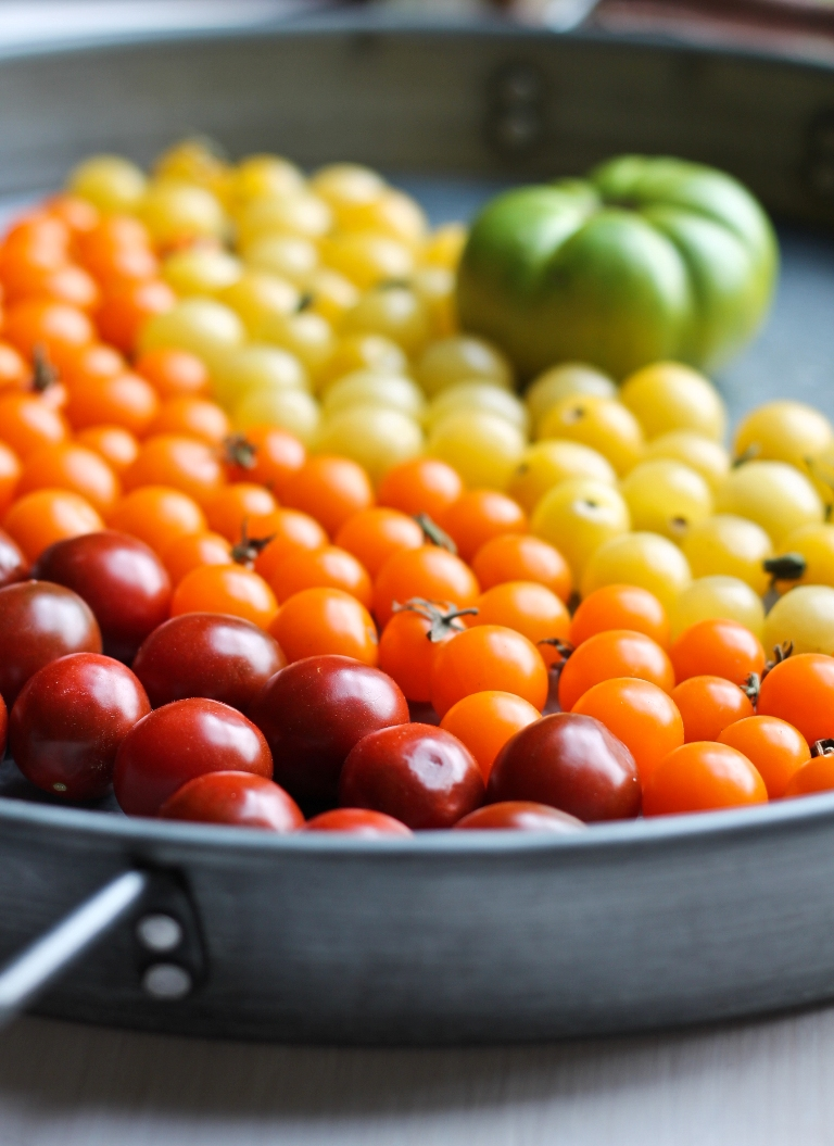 Silver tray of red orange yellow tomatoes