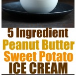 5 Ingredient Vegan Peanut Butter Sweet Potato Ice Cream