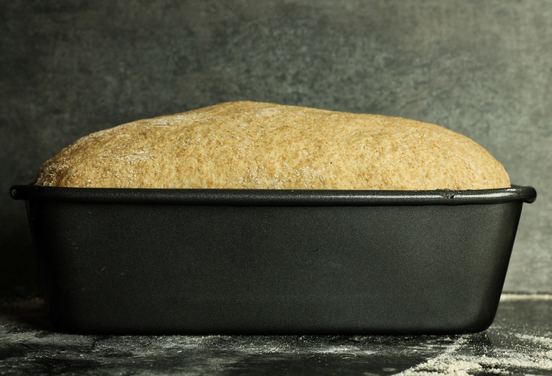 Loaf pan with risen dough just before baking