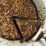 Vegan Vanilla Chocolate Chip Cake with ganache