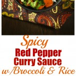 Spicy Red Pepper Curry Sauce with Broccoli and Rice