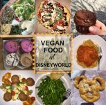 Vegan at Disneyworld