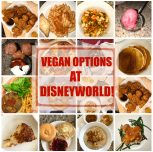 Vegan Options at Disneyworld